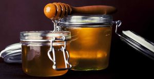 Can Dogs Eat Honey?