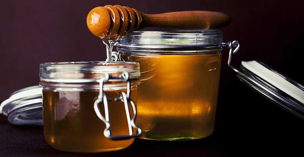 Can dogs eat honey? Is honey safe for dogs? Are there any health benefits to giving dogs honey?