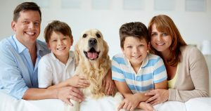 Tips and advice on choosing a dog breed