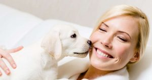Why Do Dogs Lick People?