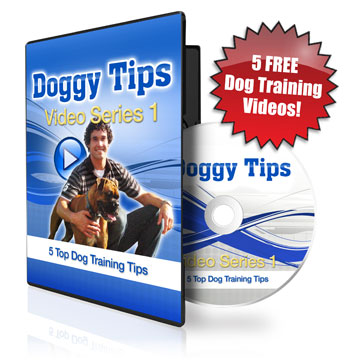5 Free Dog Training Videos