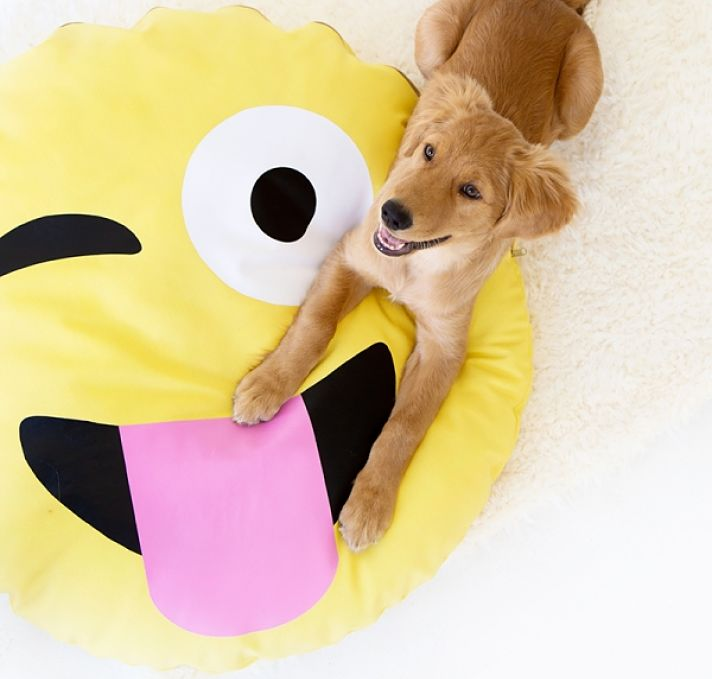 Emoji DIY dog bed