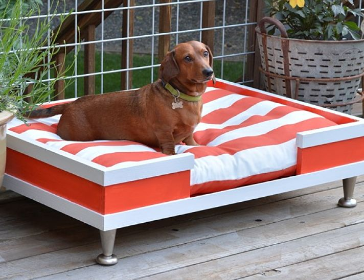 Modern DIY dog bed