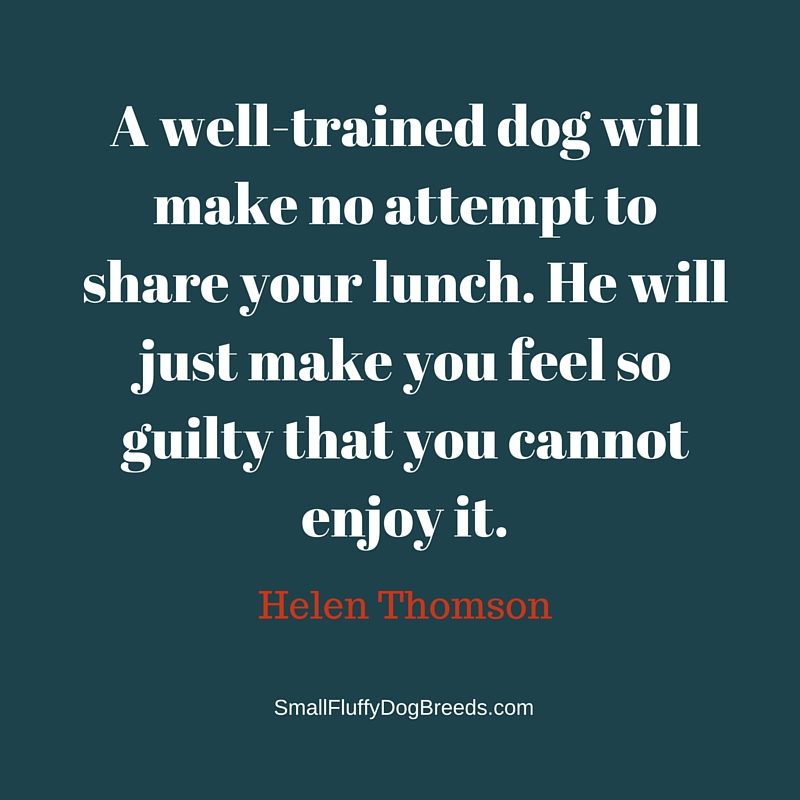 A well-trained dog will make no attempt to share your lunch. He will just make you feel so guilty that you cannot enjoy it - Helen Thomson quote