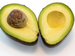 Are avocados good for dogs?