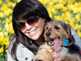 Some advice on how to keep your dog safe in hot weather